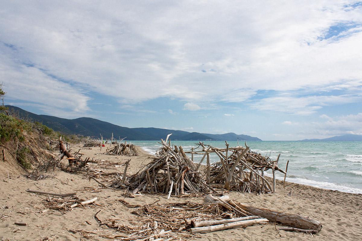 Der Strand ist voll von altem weiß gebleichten Holz.