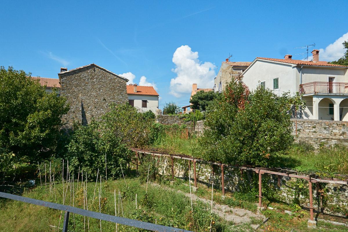 Mitten auf der Festung gibt es auch kleine Gärten mit Wein und …