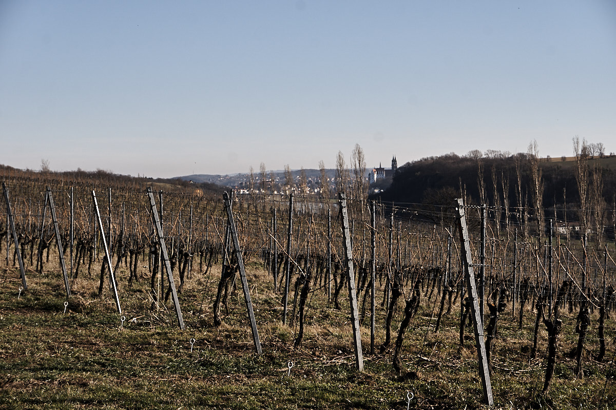 Die Albrechtsburg ist in der Ferne immer noch zu sehen.